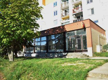Na prenájom podnikateľské priestory, 392 m², Brezová pod Bradlom, Myjava, voľné ihneď