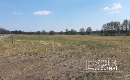 Predaj – Investičný  pozemok v Borskom Svätom Jure, časť Húšky – EXPISreal