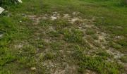 Stavebný pozemok Žilina - Bytčica