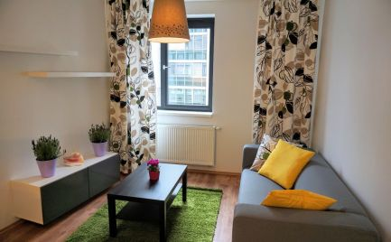 PRENÁJOM 2 izbový byt NOVOSTAVBA Bratislava Staré Mesto oproti Prezidentskému palácu - EXPISREAL