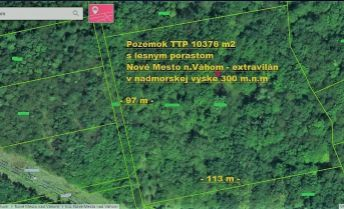 Pozemok TTP 10376 m2 s lesným porastom, Nové Mesto nad Váhom.