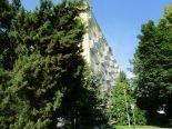 Zvolen - centrum - 2 izbový byt - prenájom