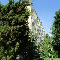 2 izbový byt, Zvolen, 51 m², Pôvodný stav