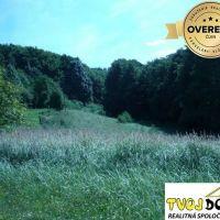 Poľnohospodárska pôda, Lučenec, 99418 m²