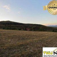 Poľnohospodárska pôda, Detva, 3119 m²