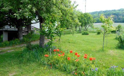 Predaj štvorizbový rodinný dom s garážou a veľkým pozemkom 30 á v Brezovej pod Bradlom, okr. Myjava