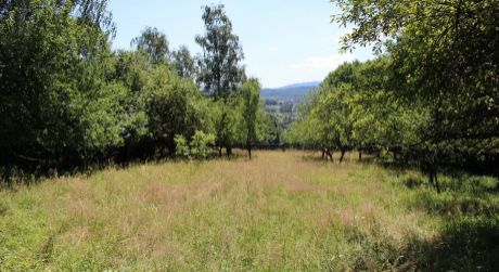 Chata na Lipovci pod lesom s pozemkom 1710 m2 a vlastným súpisným číslom