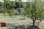 Realitná kancelária SA REALITY ponúka na predaj pozemok na výstavbu domu Levice
