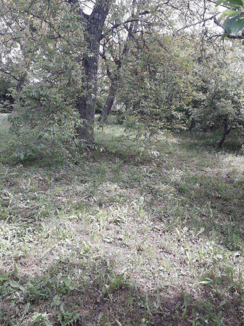 Pozemok pre RD-Predaj-Vranov nad Topľou-16990.00 €