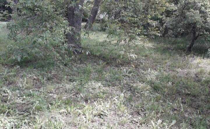 ZNÍŽENA CENA - pozemok vo Vranove nad Topľou