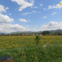 Poľnohospodárska pôda, Martin, 31270 m²