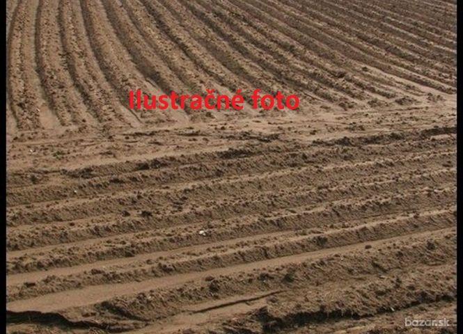 poľnohospodárska pôda - Báb - Fotografia 1