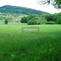 Pre rodinné domy, Nová Baňa, 4317 m²