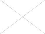 Záhrada o výmere 660 m2,  Nové Mesto nad Váhom
