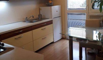 Slnečný 3 izbový byt v blízkosti jazera Draždiak.