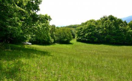 DMPD real Vám ponúka na predaj krásny mierne svahovitý pozemok na okraji lesa v kúpeľnom meste Bojnice