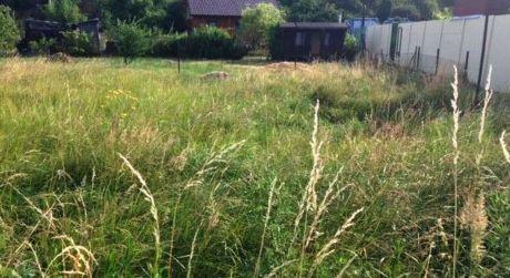 Pekná záhrada na Žabom majeri je na predaj- 508m2- výhodná cena