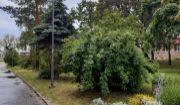 PREDAJ- 2-izb.byt BA III.- Nové Mesto- Krasňany