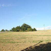 Pre rodinné domy, Skalka nad Váhom, 2482 m²