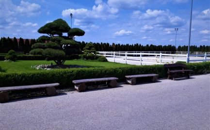 NA PREDAJ novovybudovaný JAZDECKÝ AREÁL v krásnom, tichom a zelenom prostredí 25 km