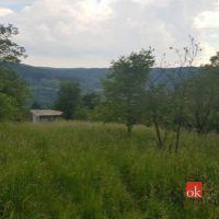 Pre rodinné domy, Borinka, 3200 m², Pôvodný stav