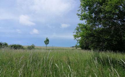 Na predaj rozľahlý pozemok v Podkylave