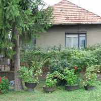 Rodinný dom, Kamenica nad Hronom, 100 m², Pôvodný stav