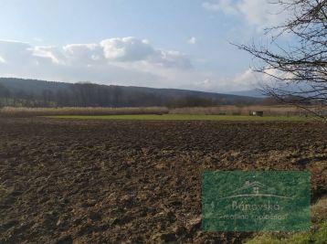 Pozemok v obci Veľké Držkovce na predaj