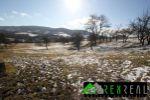 Bývalá poľnohosp. usadlosť - Pliešovce - Fotografia 23