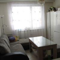 1 izbový byt, Zlaté Moravce, 40 m², Čiastočná rekonštrukcia