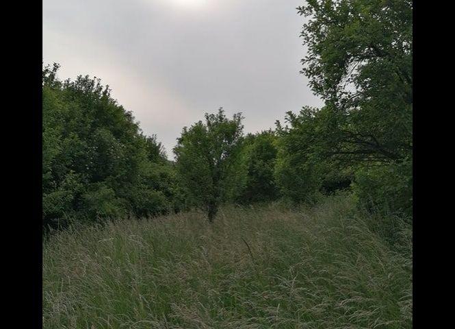 orná pôda - Horná Súča - Fotografia 1