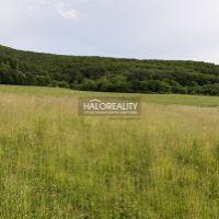 Rekreačný pozemok, Hrabičov, 4861 m², Pôvodný stav