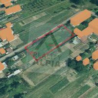 Záhrada, Budkovce, 1000 m²