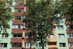 4 izbový byt - Bratislava-Podunajské Biskupice - Fotografia 13