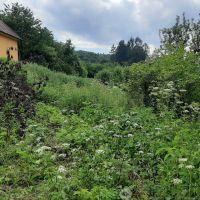 Orná pôda, Udiča, 4273 m², Pôvodný stav