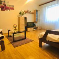 1 izbový byt, Sobrance, 40 m², Čiastočná rekonštrukcia
