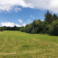 Rekreačný pozemok, Nová Baňa, Pôvodný stav