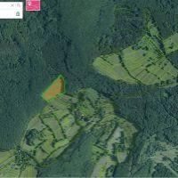 Poľnohospodárska pôda, Pliešovce, 21008 m², Pôvodný stav