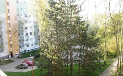 Veľký 1 izbový byt , 38 m2, centrum -  B. Bystrica  - cena 76 000€