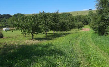 Na predaj krásny pozemok v Komaranoch