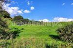 rekreačný pozemok - Čierny Balog - Fotografia 3