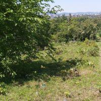 Záhrada, Levice, 1049 m²