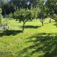 Záhrada, Vrútky, 610 m², Pôvodný stav