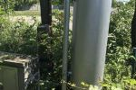 záhrada - Trnava - Fotografia 9