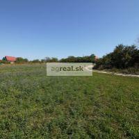 Poľnohospodárska pôda, Skalica, 10000 m²