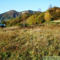 Trvalý trávnatý porast, Haligovce, 2684 m², Pôvodný stav