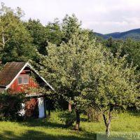 Záhrada, Marianka, 418 m², Pôvodný stav