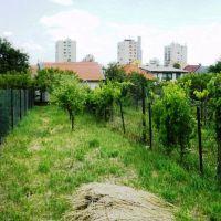 Záhrada, Bratislava-Rača, 253 m²