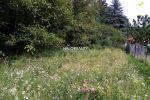 rekreačný pozemok - Janova Lehota - Fotografia 2