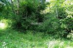 rekreačný pozemok - Janova Lehota - Fotografia 3